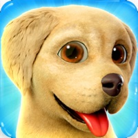 Codes for Dog Town: Pet Simulation Game Hack