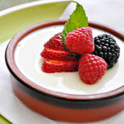 Healthy Desserts - Recipes to cook yourself thin icon