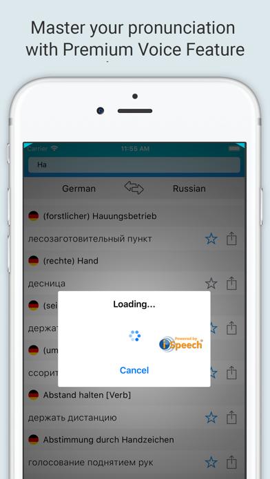German Russian Dictionary + screenshot 3