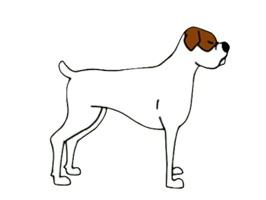 Cute White Boxer Dog Sticker