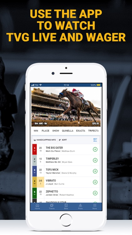 Free tvg horse betting cryptocurrency charts app
