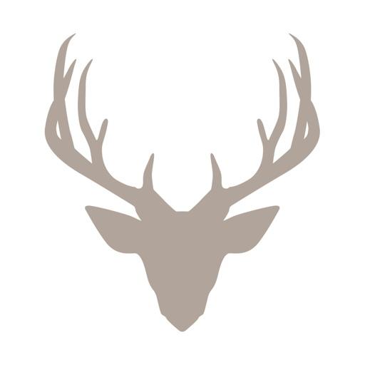 Fieldstone Guide: Mammals