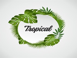 The TropicalST is a small sticker, which are show the 50 Tropical sticker in cartoon