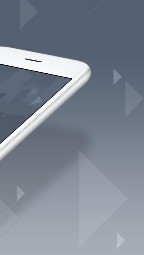 Payoneer App 截图