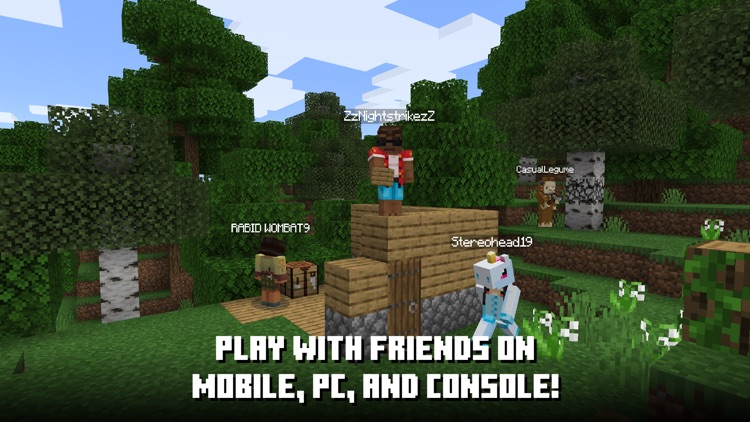 Minecraft screenshot-6