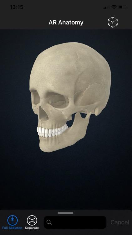 AR Anatomy: Skeleton