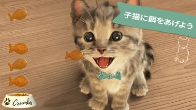 Little Kitten 小さな子猫 - お気に入りの猫のおすすめ画像4