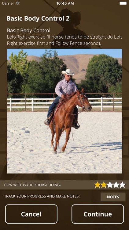 WS Horse Training Checklist