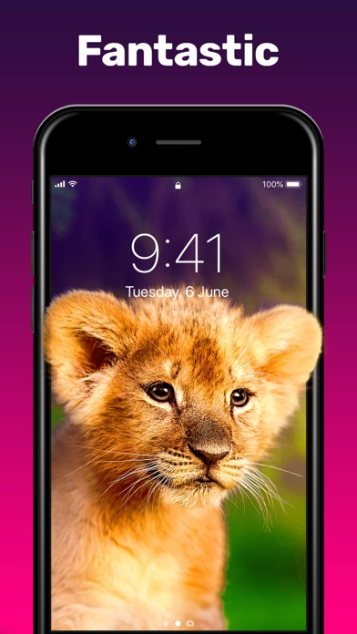 Screenshot for Live Wallpapers 。 in Jordan App Store