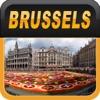 Brussels Offline Map Guide
