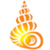 Shell Museum: Identify Shells - Shell Museum and Educational Foundation, Inc.
