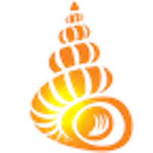 Shell Museum: Identify Shells app