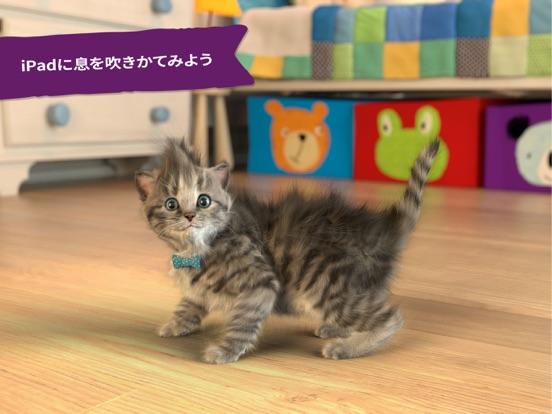 小さな子猫-私の好きな猫  3+のおすすめ画像5
