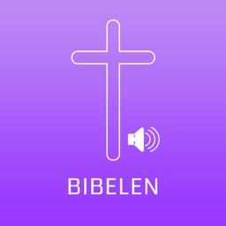 Norweign Bible Audio