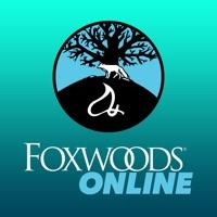 FoxwoodsONLINE Hack Online Generator  img