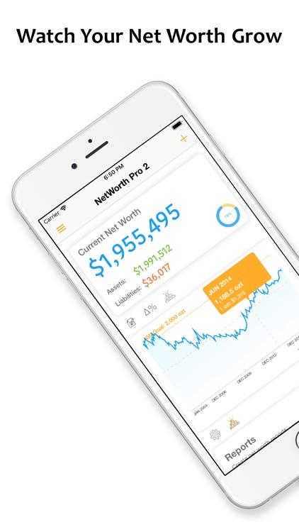 Net Worth Pro 2 screenshot-0