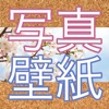 Patternator 動画ブ壁紙 4K