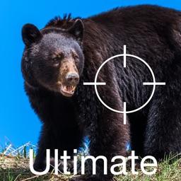 Ultimate Predator Calls