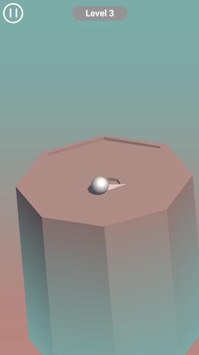 Roll Puzzle screenshot 3