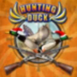 Duck Hunt - Duck hunting games