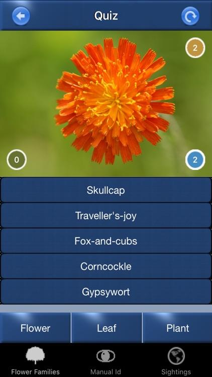 Wild Flower Id British Isles screenshot-4