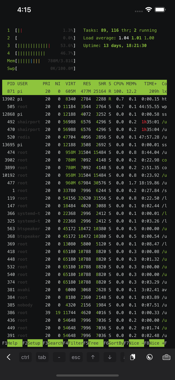ServerCat - 监控 Linux 系统状态与 Docker 容器状态,还可作为 SSH 终端使用[iPad/iPhone]