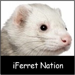 iFerret Pet Care