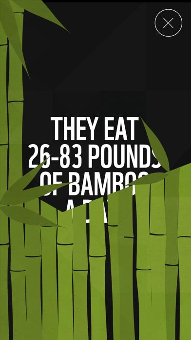WWF Together app image