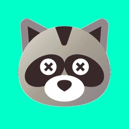 Raccoon Cartoon Stickers