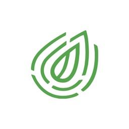Greenprint — Plant-Based Diet