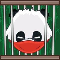 Codes for Jailbreak Panda Hack