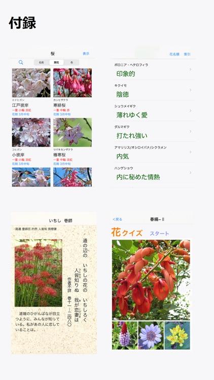 花しらべ 花認識/花検索 screenshot-3