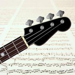 Reading Bass sheet music PRO