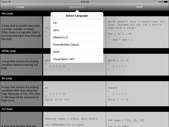 Coder's Stone screenshot three