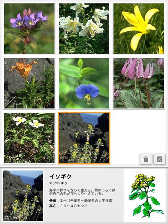 リング図鑑 《植物》 screenshot-4
