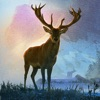 Deer Hunter World: The Hunt