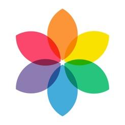 Rollit - Photo Transfer App