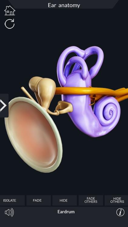 My Ear Anatomy screenshot-6