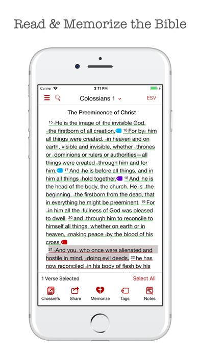 The Bible Memory App Screenshot
