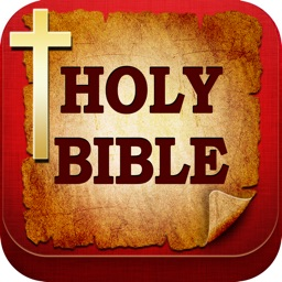 holy bible niv daily study