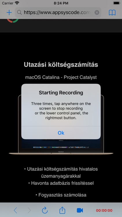 Web Page Screen Recorder