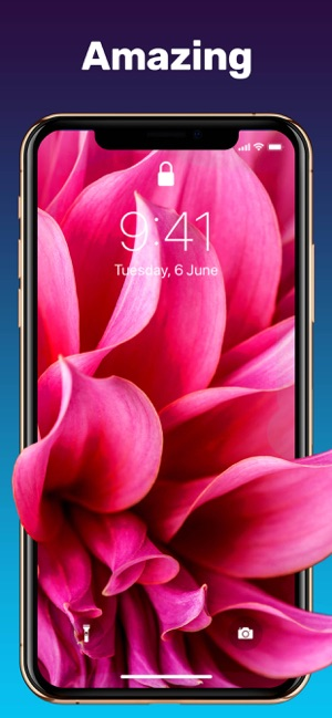 Live Wallpaper Wallpapers Hd On The App Store