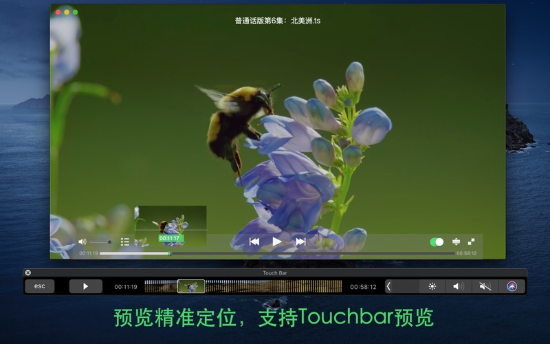 Ya!Video·TV投屏&全能视频播放器 for Mac