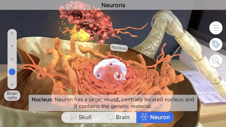 Brainapse screenshot-4