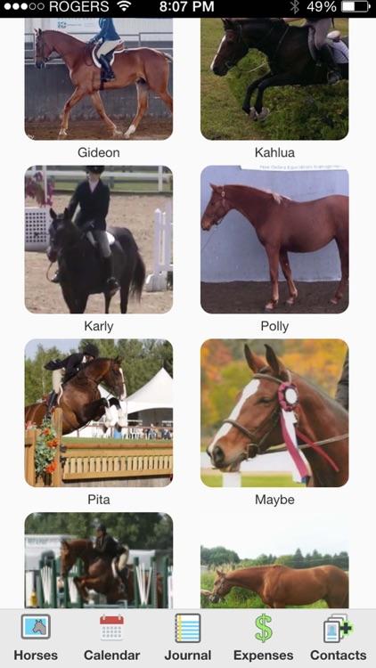 HorseNotes