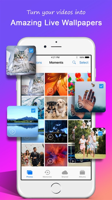 Top 10 Apps like Animated GIF Wallpaper in 2019 for iPhone