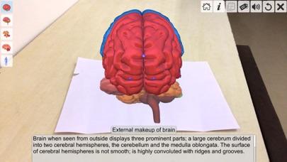 AR Human brain screenshot 4