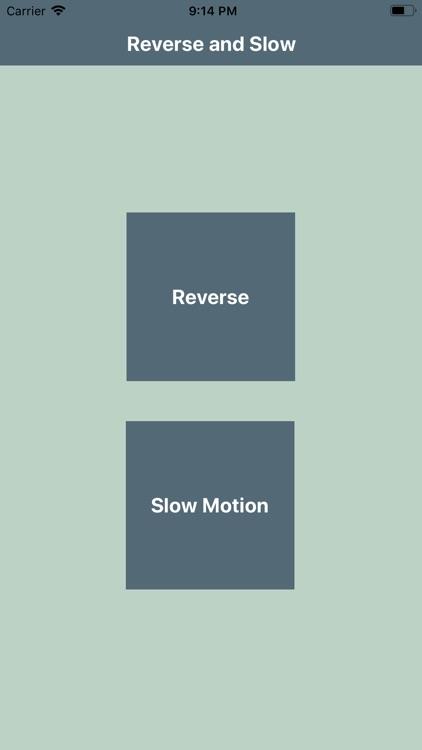 reverse vision