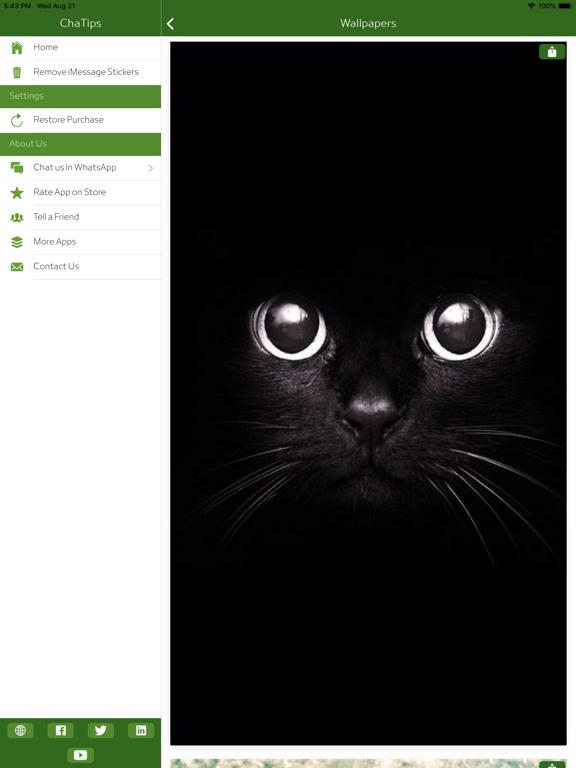 ChaTips - Status & Direct Chat screenshot 17