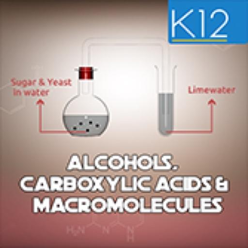 Alcohols & Carboxylic Acids